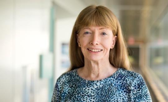 Lynne Conwey Sumber : eecs.umich.edu